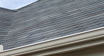 Roof Shingles Contractor